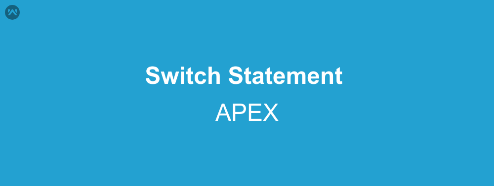 How to use Switch Statement in APEX | WedgeCommerce